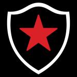 Botafogo badge