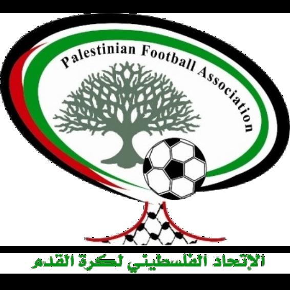 Palestine badge