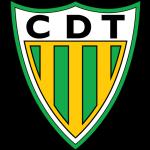 Tondela badge