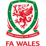 Wales Team Badge