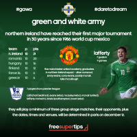 Euro 2016 northern ireland qualifying campaign