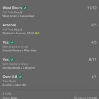 Premier League winning tips