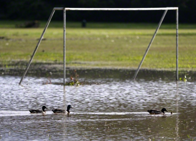 boxing day matches called off