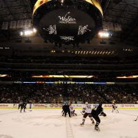 Stars vs Coyotes betting tips predictions