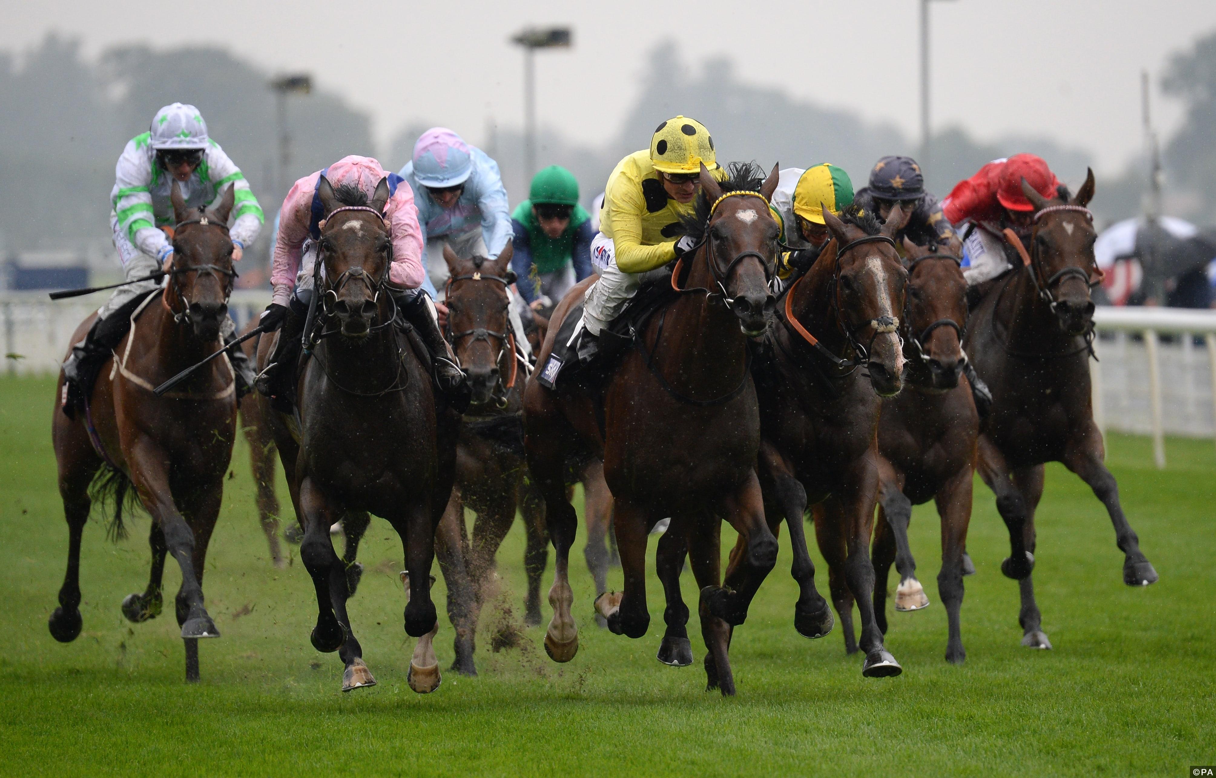 2016 Yorkshire Ebor Festival - Coolmore Nunthorpe Day - York Racecourse