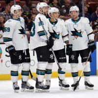 NHL - San Jose Sharks